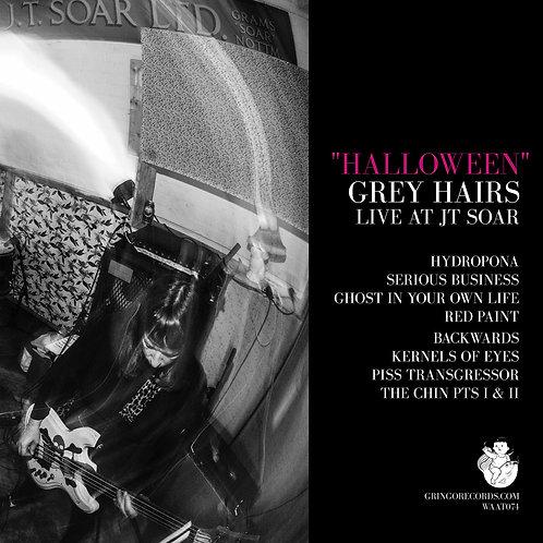 GREY HAIRS - HALLOWEEN (LIVE AT JT SOAR)