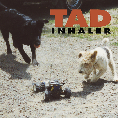 TAD - INHALER (RSD21)
