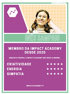 INES S 2.png
