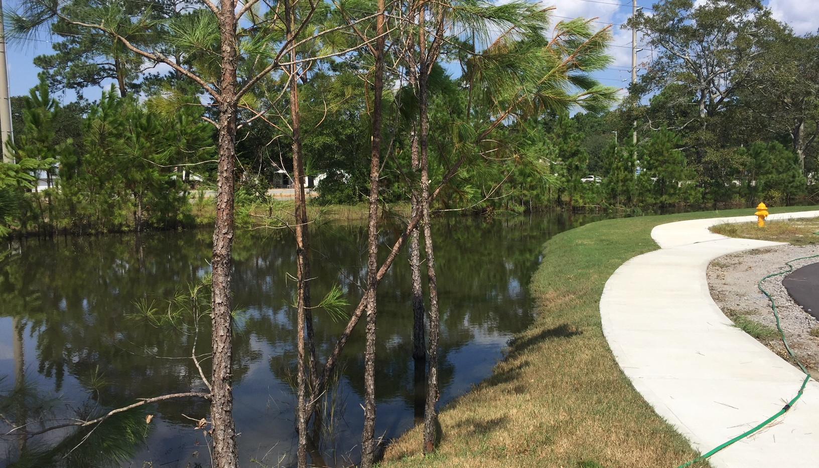 Front Lagoon