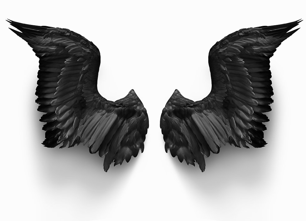 pairs of black devil wings isolate with