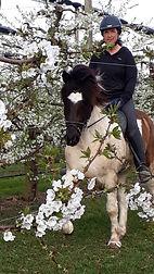 Kischenblüten_vorne.jpg