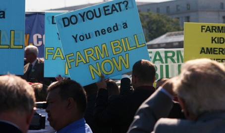Why Do We Need a Farm Bill?