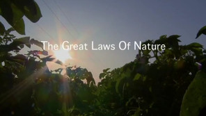 Sustainability and the Laws of Nature