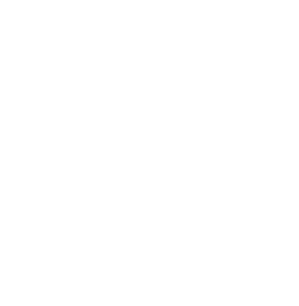 TheActiveSpirit_weiß.png