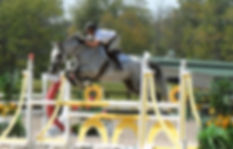 Equestrian Center Hurdles