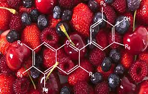 Anthocyanin Berries.png
