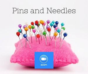 pins and needles zoom.jpg