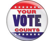 Your Vote button 202x156.jpg