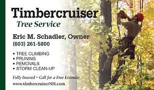 Timbercruiser-BC-webad_edited.jpg