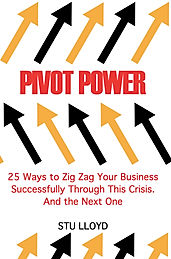 pivot-business-plan-strategic-pivot-book