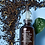 Thumbnail: Fresh Black Tea Age-Delay Firming Serum紅茶抗皺緊緻精華