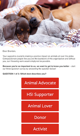 Email Example - HSI.png
