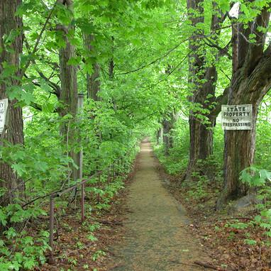 Path summer
