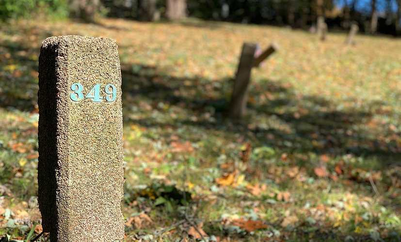 Danvers State Hospital Cemeteries John Gray