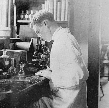 A technician studying a glass slide specimen in the medical laboratory.