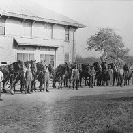 On the land below the hill (Lowlands) were numerous buildings used for mechanical and farm purposes. This 1920s photo shows part of the farm complex with multiple pairs of horses and their teamsters posing for the camera.