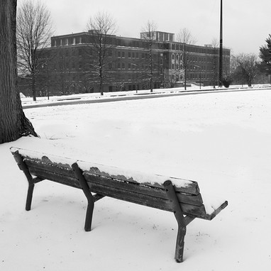 Bench with Bonner building