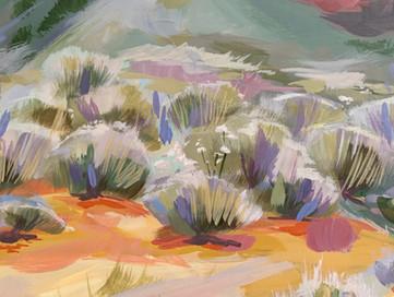 Desert Dweller Detail