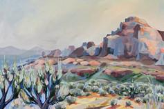 Desert Dweller