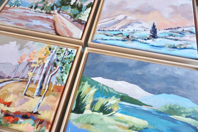 Custom Landscapes