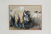 Bison on the Plains