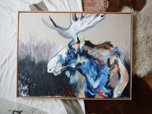 Moose Thoughts Fine Art Print