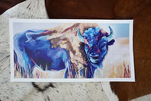 Blue Bison Fine Art Print 18x9