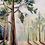 Thumbnail: Ponderosa Canvas Print