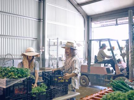 [黃育徵專欄] 發展循環型新農業 三路並進