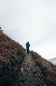 Hiking for a view.jpg