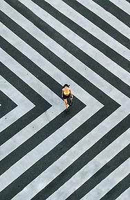 The crossing.jpg
