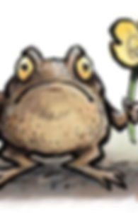 The pretty toad2.jpg