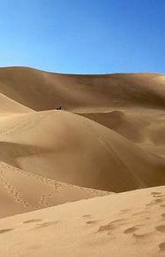 Sand giants.jpg