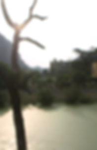 I Dream of Vietnam.jpg