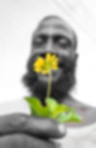 Green & Yellow2.jpg
