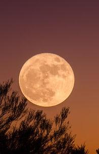 hidden moon.jfif