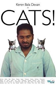 Cats!.jpg
