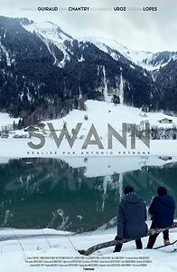 SWANN.jpg