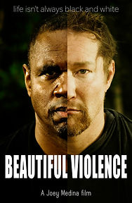 Beautiful Violence.jpg