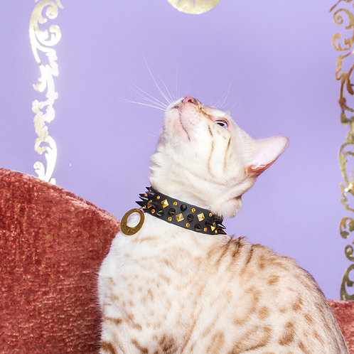 Crazy Deamon cat necklace