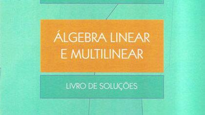 ALGEBRA LINEAR E MULTILINEAR                    01