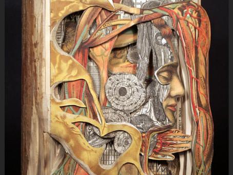 Paper Prodigy: Brian Dettmer