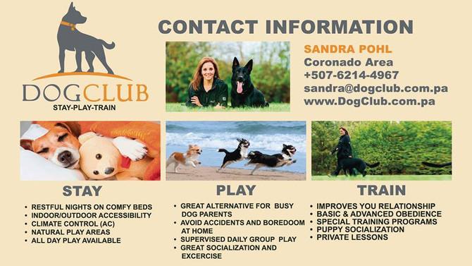 Dogs Just Love Sandra!