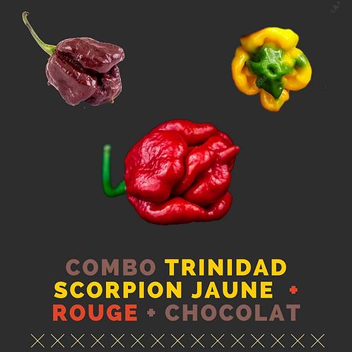 Pack Trinidad Scorpion Rouge/Jaune/Chocolat