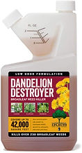 Ikes Dandelion Destroyer.jpg