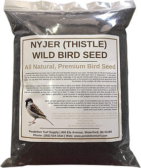 Nyjer (Thistle) Bird Seed | All-Natural, Premium Bird Seed