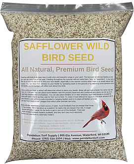 Safflower Wild Bird Seed | All-Natural, Premium Bird Seed