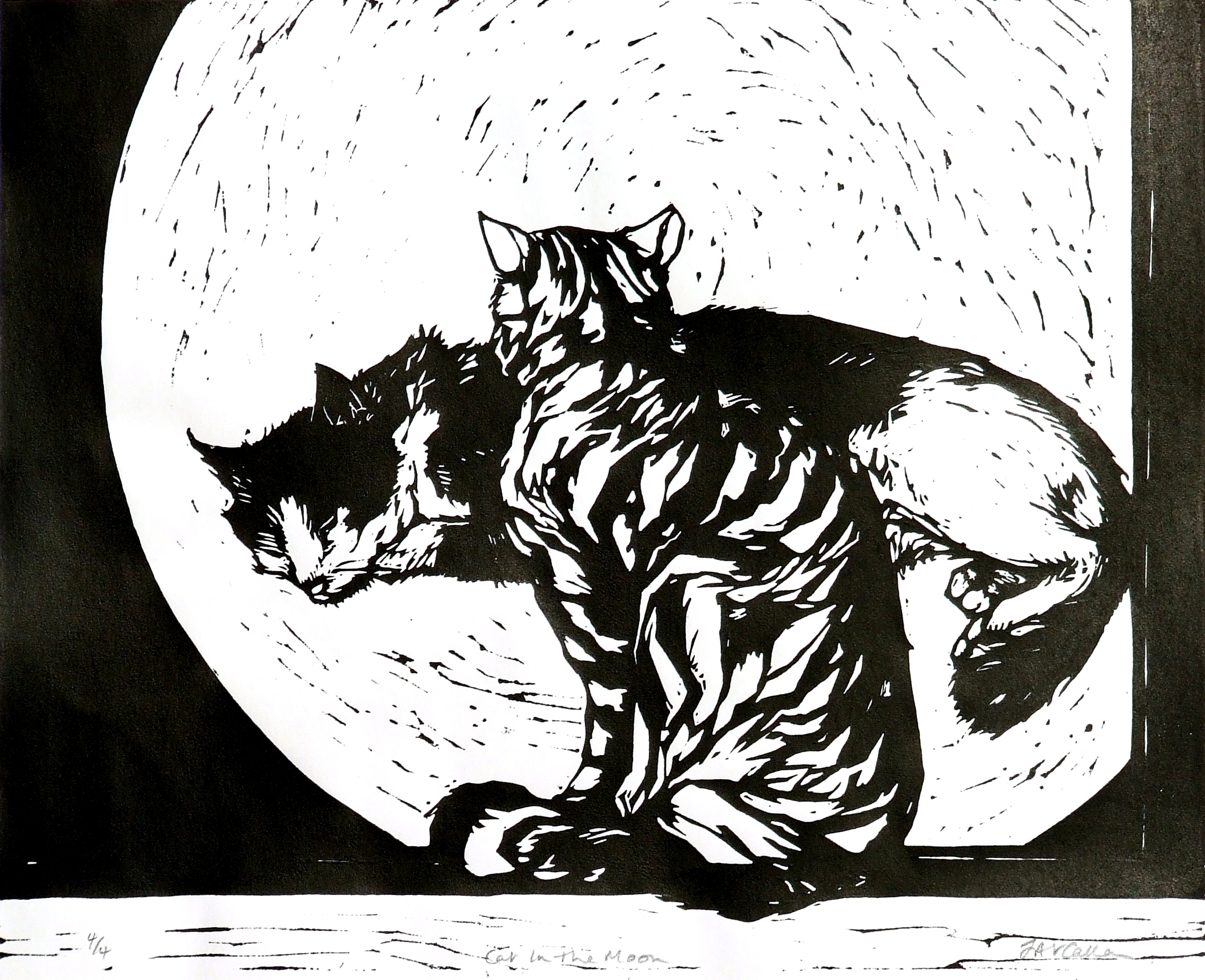 Cat in the Moon