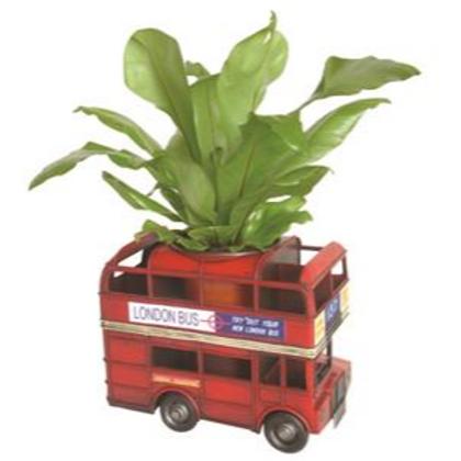 Planter - London Bus